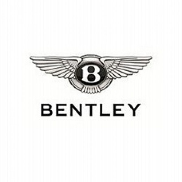 Bentley ORIGINAL ECU dumps