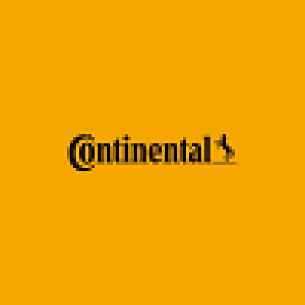 Continental Sagem Denso Visteon ecu pinouts