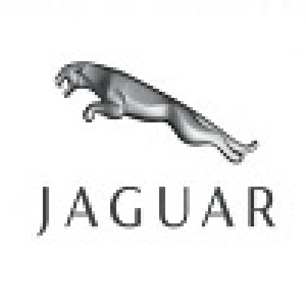 Jaguar ORIGINAL ECU dumps