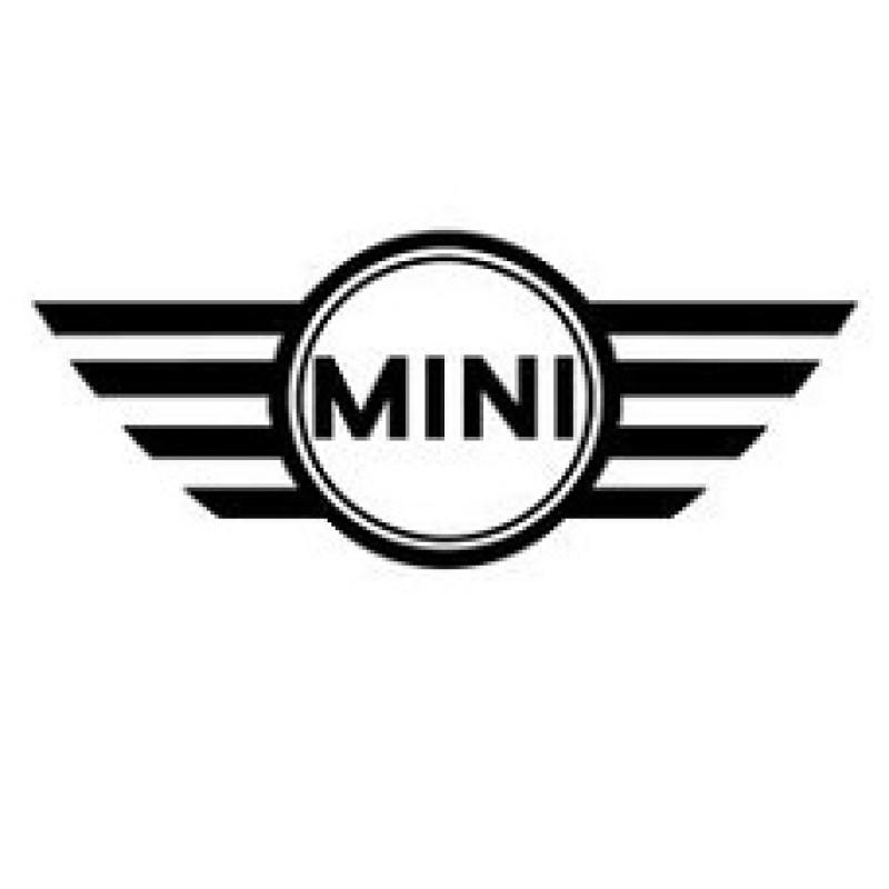 Mini ecu pinouts